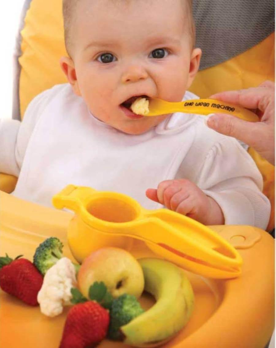 Image Result For Kesehatan Bayi   Bulan