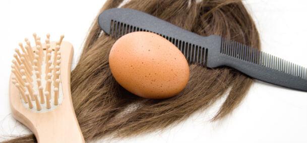 manfaat telur untuk rambut