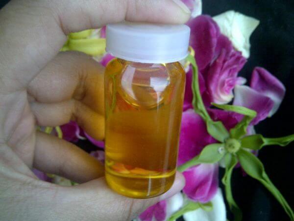 minyak bulus untuk membesarkan payudara