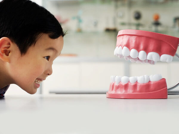 kesehatan gigi pada anak