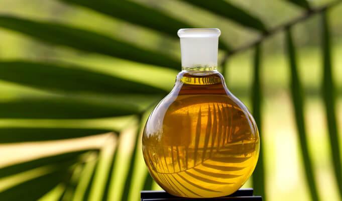 minyak bulus untuk perawatan kulit