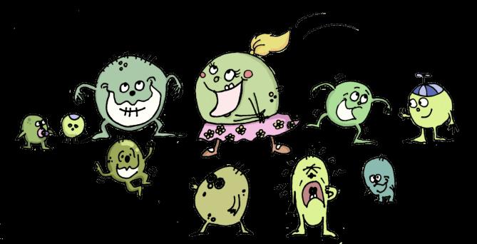 bakteri penyebab jerawat