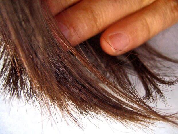 Cara Mengatasi Rambut Bercabang Secara Alami Dan Sehat