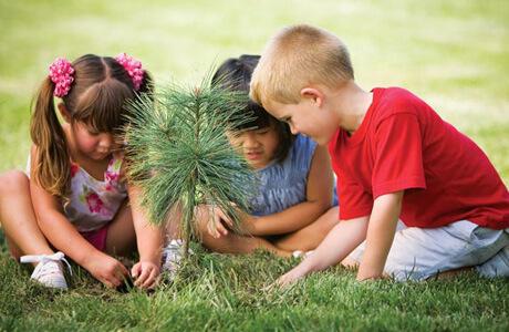 cerdas menyikapi lingkungan bermain