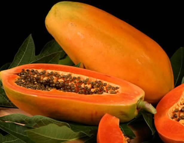 buah pepaya untuk membesarkan payudara