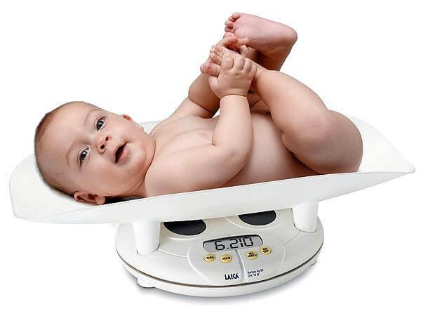 pantau gizi  anak lewat berat badan