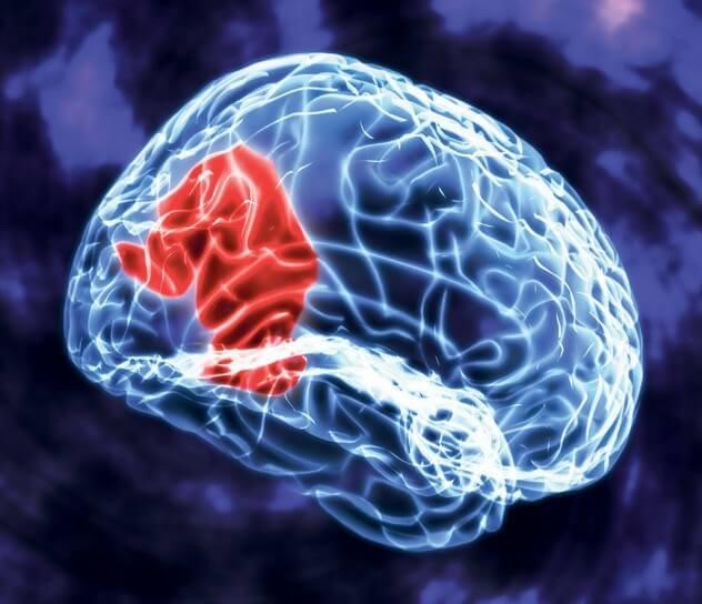 Kajian Ilmiah Membantah Metode Aktivasi Otak Tengah