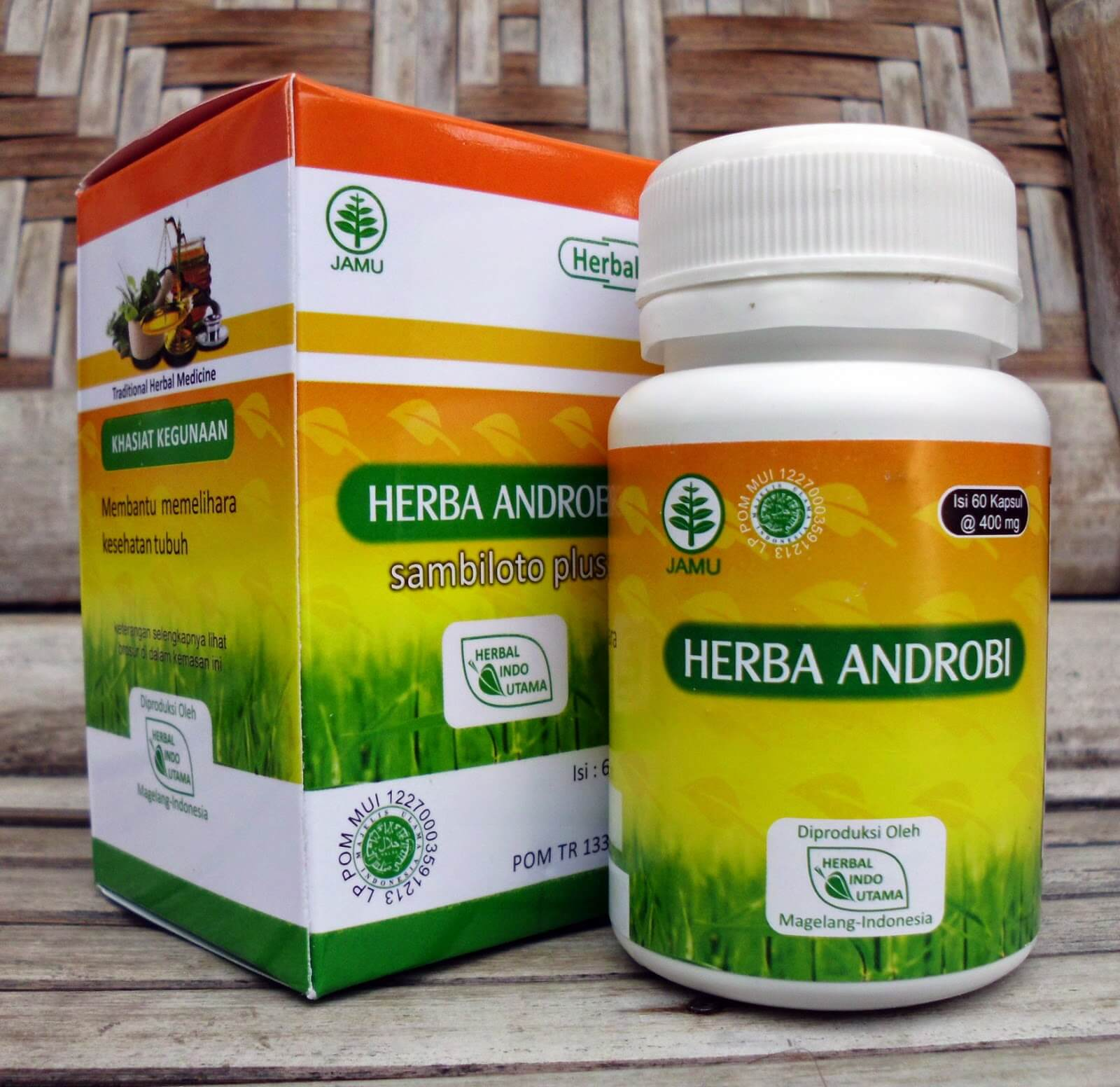 Herba Androbi, Obat Antibiotik Alami
