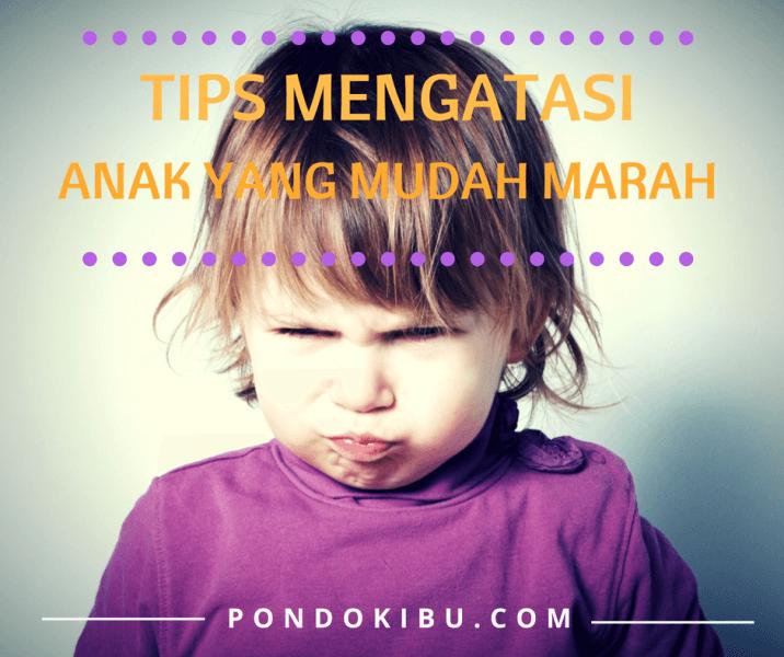 tips-mengatasi-anak-yang-sedang-marah1